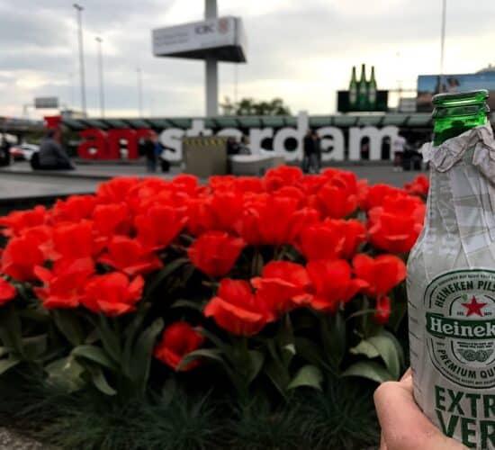 Birra olandese